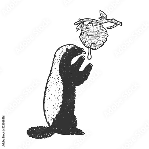 Canvas-taulu Honey badger ratel eats honey from wild bees hive animal sketch engraving vector illustration