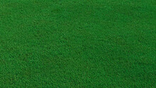 Green Grass Texture Background. A Perfectly Manicured Sports Field / Pitch / Garden Lawn Wallpaper.