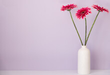 Several Gerberas On White Vase Blue Background