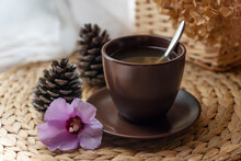 Brown Cup Of Herbal Tea, Two Pine Cones And Gentle Flower On Straw Table. Healthy Lifestyle, Organic Beverages For Healthy Living, Alternative Medicine.