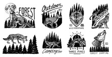 Gray Wolf Logo And Badge. Forest And Mountain And Hill. Double Exposure Concept. A Predatory Beast. Wild Forest Animal. Vector Engraved Hand Drawn Vintage Old Sketch For Tattoo, T-shirt Or Typography.