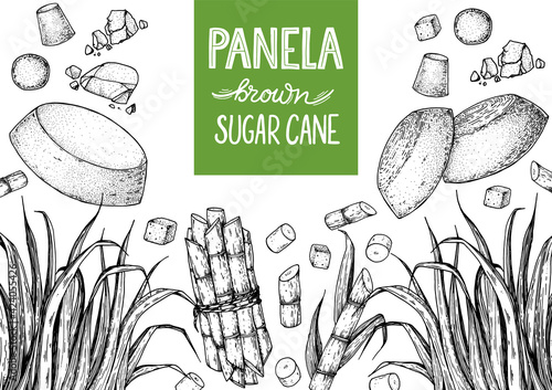 Fototapeta Panela sugar sketch. Hand drawn vector illustration. Vintage design template. Cane sugar. Gur or jggery powder. Organic unrefined. Vintage Design for packaging. obraz