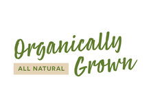 Organically Grown, All-Natural Text, Natural Foods Store Sign, Local Farmer's Market, Farmer's Market Banner, Vector Illustration Background