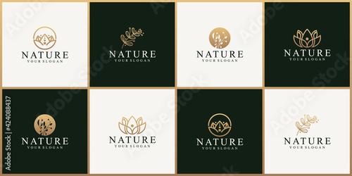 Fototapeta Set of abstract nature flower logo design template