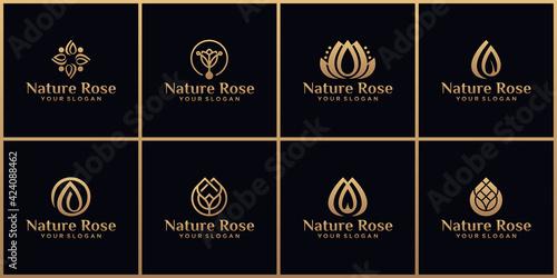Obraz na plátně collection of natural flower logos