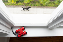 Red Binoculars On Child's Bedroom Window With Dog Walking Outside