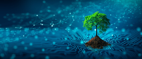Tree with soil growing on the converging point of computer circuit board. Blue light and wireframe network background. Green Computing, Green Technology, Green IT, csr, and IT ethics Concept.