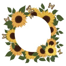 Sunflower And Butterflies Frame. Sunflower Flower And Leaves. Botanical Element. Vector Isolated Pattern For Design