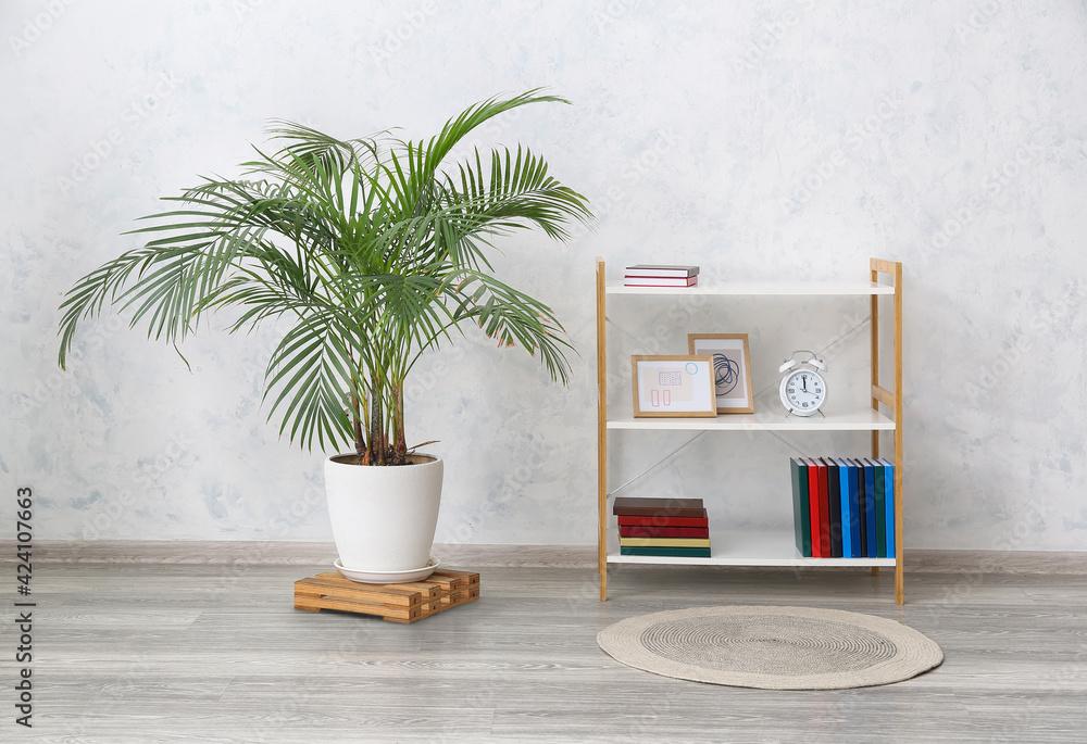 Fototapeta Modern shelf unit and houseplant near light wall - obraz na płótnie