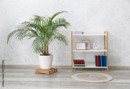 Obraz Modern shelf unit and houseplant near light wall - fototapety do salonu