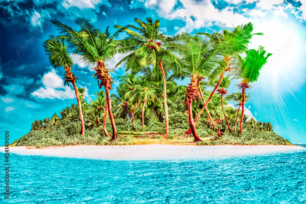 Fototapeta Whole tropical island within atoll in tropical Ocean on a summer day. Uninhabited and wild subtropical isle with palm trees. Equatorial part of the ocean, tropical island resort.