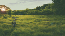 Mountain Bike In A Green Field, Toned Photo. Bicycle On Green Grass