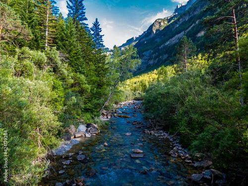 Un río atraviesa los bosques mixtos de hayas y coníferas en el cañón glaciar del Fototapet