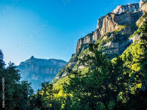 Fotografiet Las laderas de roca caliza del cañón glaciar contrastan con la vegetación mixta