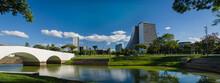 Porto Alegre, Rio Grande Do Sul, Brazil, March 29 - 2021: Beauti
