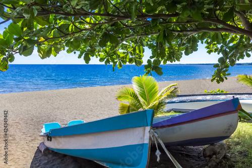 Obraz na plátně Barques de pêche sur plage de Saint-Paul, île de la Réunion