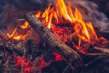 Camping Fire Cozy Closeup View. Outdoor Wildlife Lifestyle. Woods Burning In Flames Stock Photography