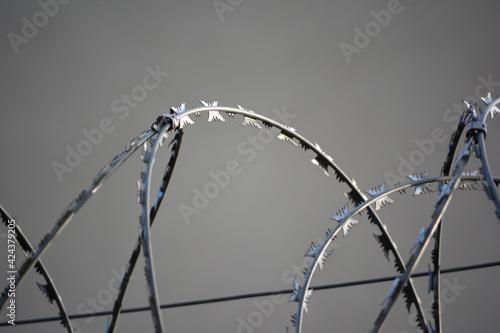 Fototapeta Zasieki z drutu kolczastego na granicy cywilizacji.  obraz