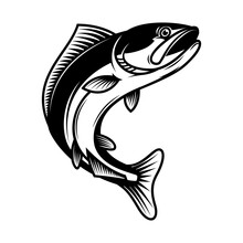 Illustration Of Jumping Salmon Fish. Design Element For Logo, Label, Sign, Emblem, Poster. Vector Illustration