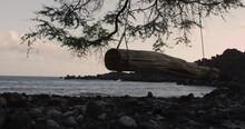 4K: Scenic Log Swing Overlooking Pacific Ocean In Late Light