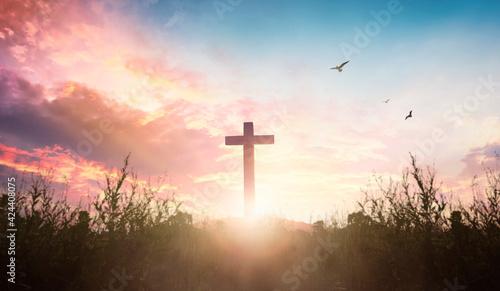Fotografie, Obraz Easter concept: cross in the morning at sunrise