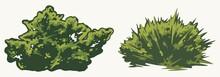 Green Shrubs Vintage Concept