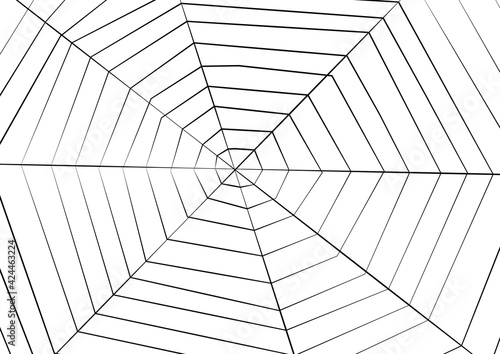Papel de parede Big Spider web background for halloween, vector