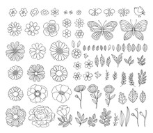 Vector Hand-drawn Spring Design Elements. Vintage Rustic Floral Illustrations. Branches, Leaves, Flowers, Butterflies, Birds.