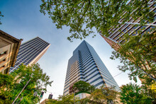 PORTLAND, OR - AUGUST 21, 2017: City Buildings And Trees On A Sunny Day