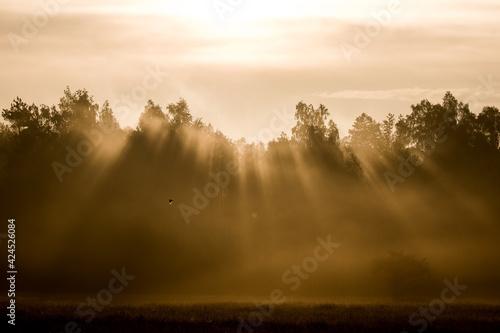 Fototapeta Promienie słońca otwiera się niebo obraz