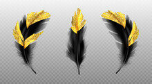 Vector Set Of Black Feathers With Gold Glitter