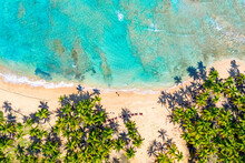 Tropical Summer Beach With Coconut Palm Trees Background. Aerial Drone Idyllic Turquoise Sea Vacation Background. Dominican Republic.