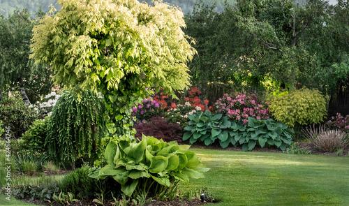 Obraz wiosenny ogród, piękny ogród, ogród, garden, beautiful garden, zielony ogród, nowoczesny ogród,  - fototapety do salonu