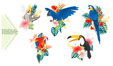Set Of Exotic Parrot Birds With Red Flowers And Green Tropical Leaves Cartoon Animal Design Tropical Fauna Vector Illustration On White Background