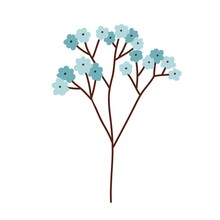 Beautiful Branch Of Blossomed Spring Forget Me Not Flowers With Soft Gentle Buds. Romantic Blooming Floral Element With Blue Petals. Colored Flat Vector Illustration Isolated On White Background