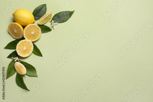 Obraz Many fresh ripe lemons with leaves and flowers on light green background, flat lay. Space for text - fototapety do salonu