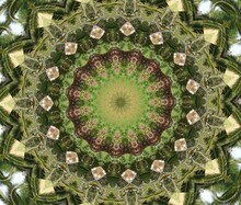 Kaleidoscope In Soft Green And Dark Green