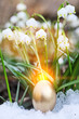 canvas print picture - Easter eggs snowflake outdoors