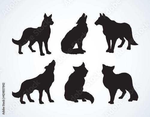 Papel de parede Wolf. Vector drawing
