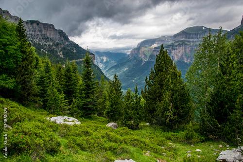 Coníferas y arbustos de alta montaña con el fondo del valle glaciar y las nubes en el Parque Nacional de Ordesa, en los Pirineos españoles