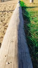 Holz Stamm Kletter Gerüst Spielplatz Sandkasten Umrandung Sand Kies Promenade Strand Balancieren Rasen Gras Fußweg Hölzern Draußen Natur Lehr Pfad Wald Gehen Kinder