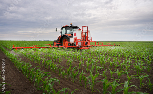 Fényképezés Tractor spraying corn field