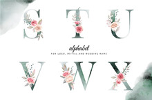 Watercolor Alphabet Set Of S, T, U, V, W, X With Beautiful Floral . For Logo, Cards, Branding, Etc
