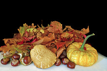 Autumn Leaves, Flowers, Pumpkin And Horse Chestnuts Displayed As A Table Decoration With Dark Background.