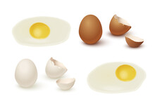 Raw Egg, Yolk And Protein, Eggshell Set. Organic Fresh Food For Breakfast Vector Illustration. Broken Shell, White And Brown Eggs Ready For Cooking And Eating On White Background