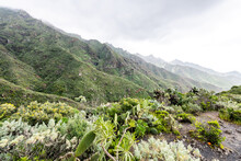 La Gomera Is One Of Spain's Canary Islands, Located In The Atlantic Ocean Off The Coast Of Africa.  The Island Is Very Mountainous And Steeply Sloping And Rises To 1,487 Metres.