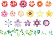 水彩風パステルカラーのお花と葉っぱのセット ベクター素材