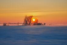 Winter Rural Landscape, Poland Around Malbork, Sunrise