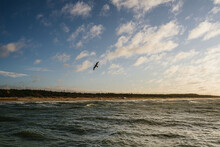 Narrow Strip Of Shore Between Heaven And Earth And Seagull Against The Sky