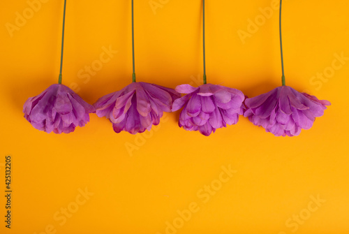 Obraz Kwiatowe, żółte tło - fototapety do salonu